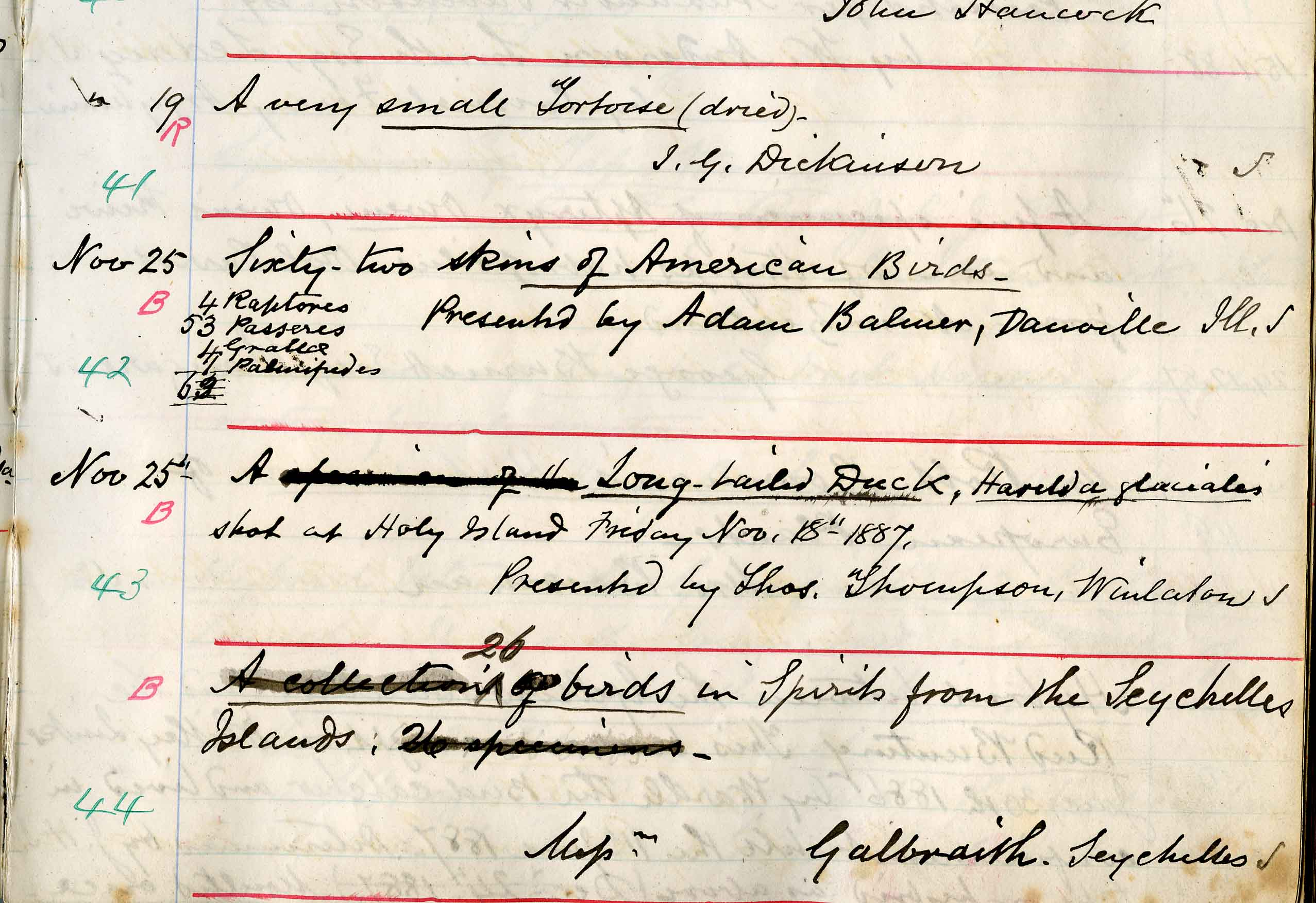 The original accession book entry from 1875