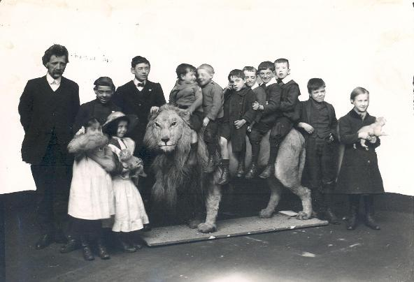 Wallace the Mounted Lion - Sunderland Museum