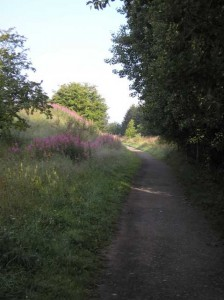 Lanchester Valley Line