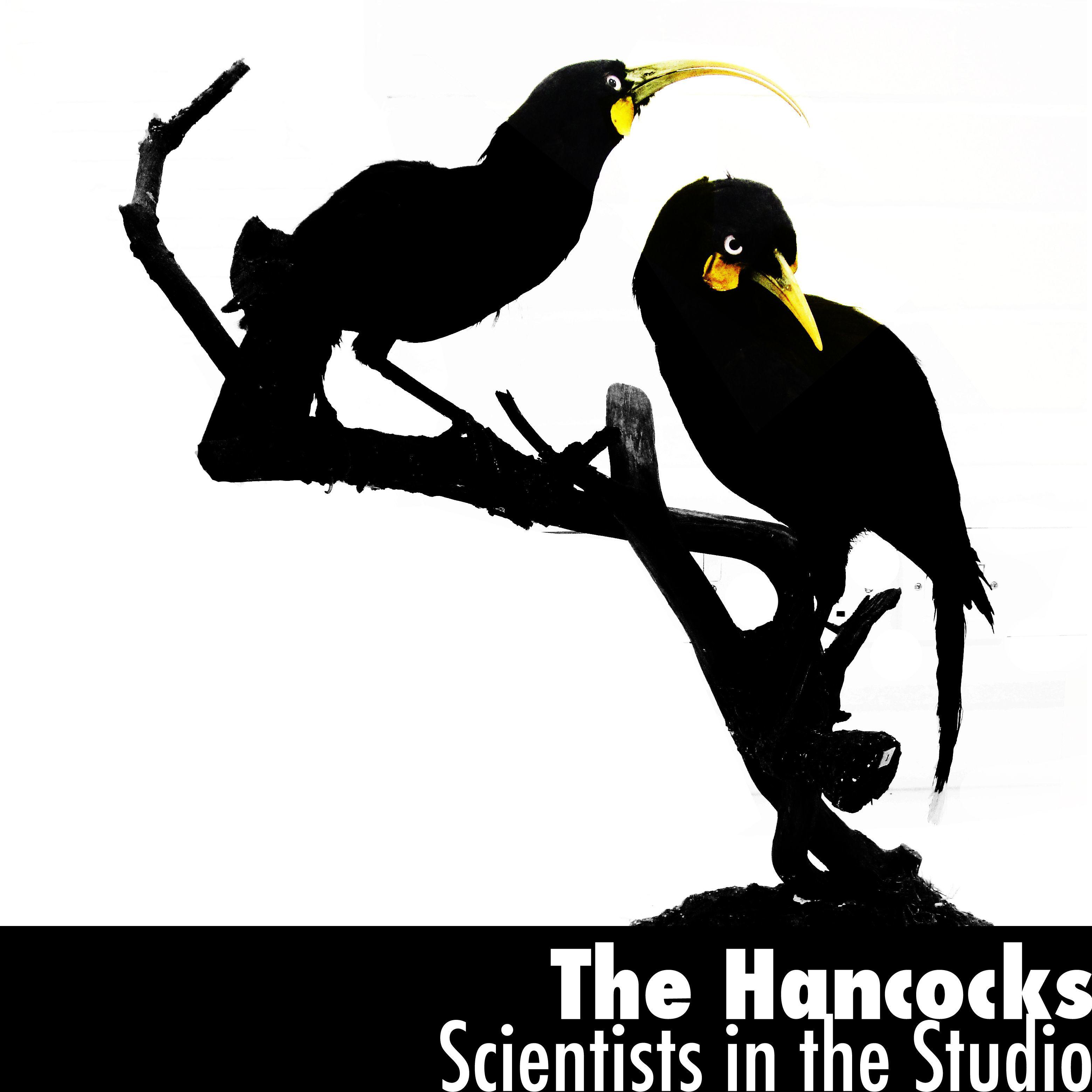 hancock bird logo