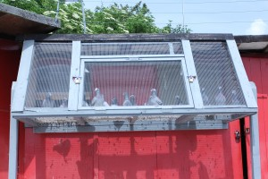 Pigeon Crees