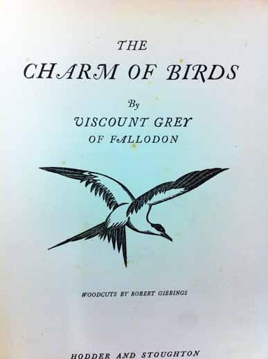 Charm of Birds