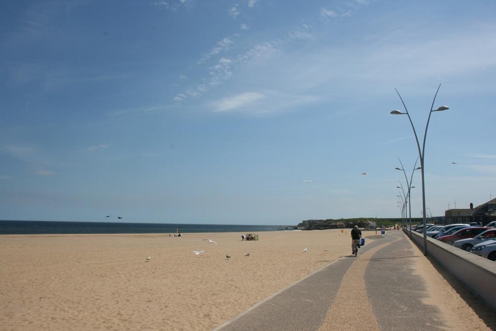 Sandhaven 2