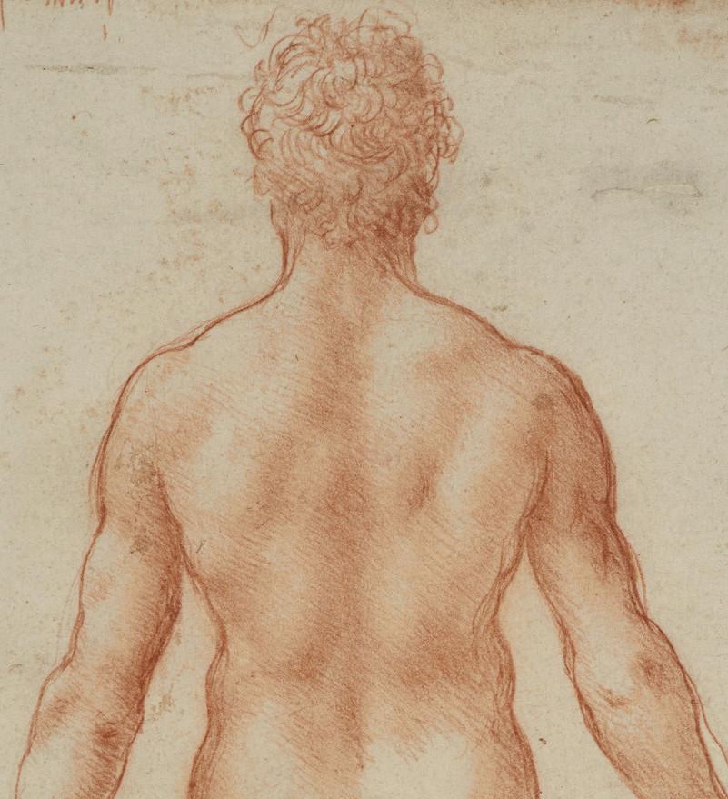 559390-1444049734 Study nude man copy