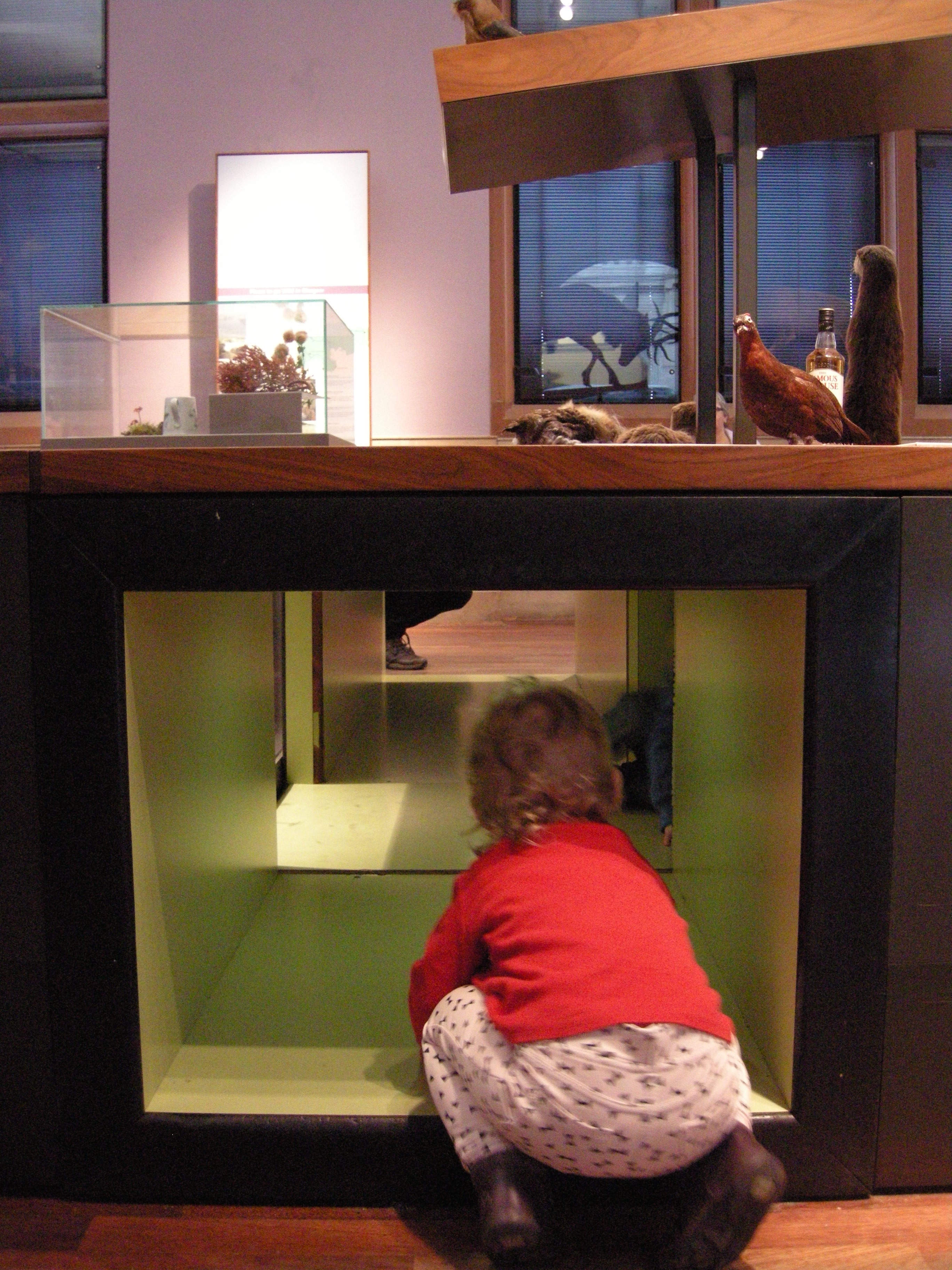 Exploring the exhibits