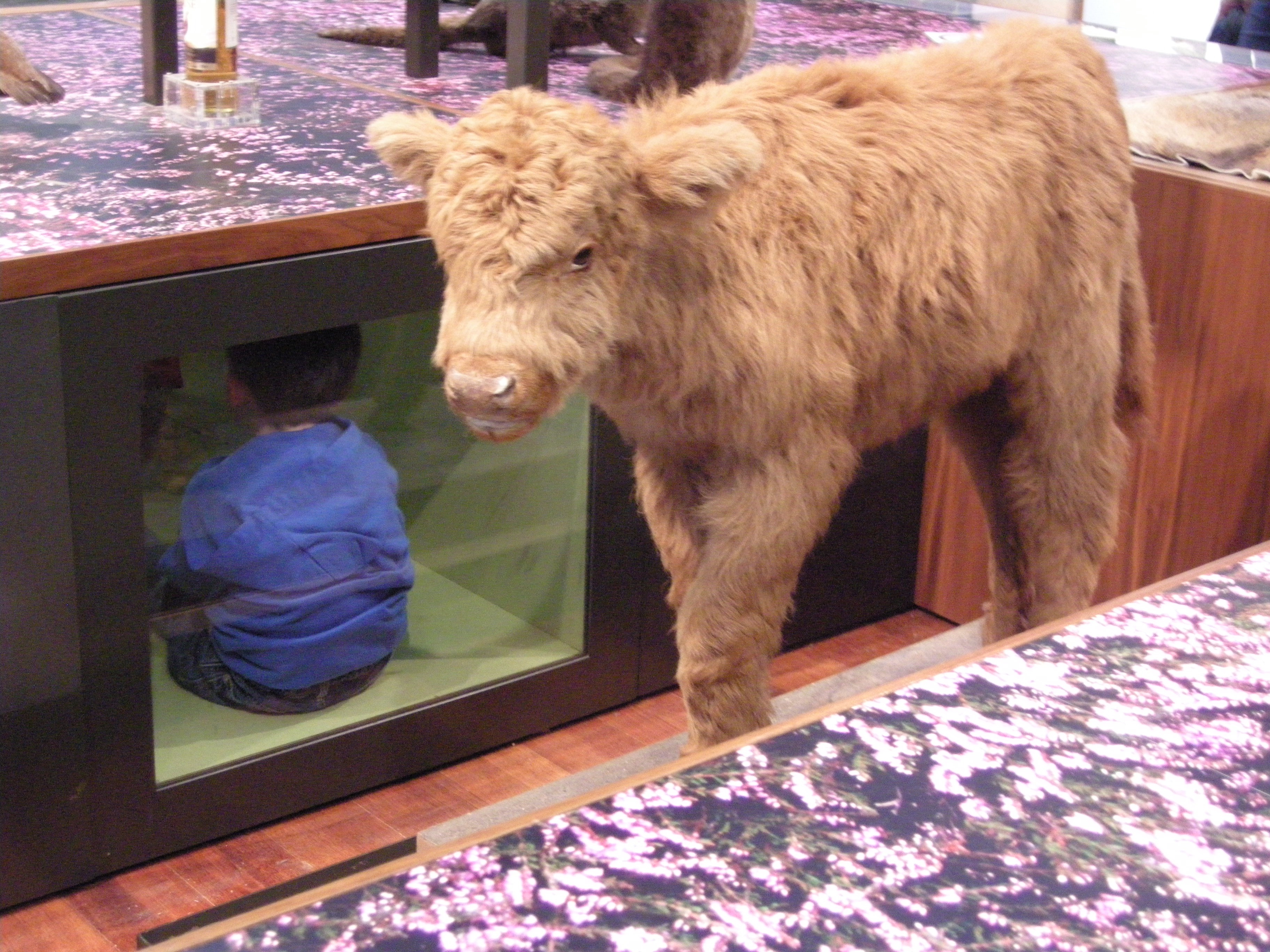 Seeing the exhibits from a different angle