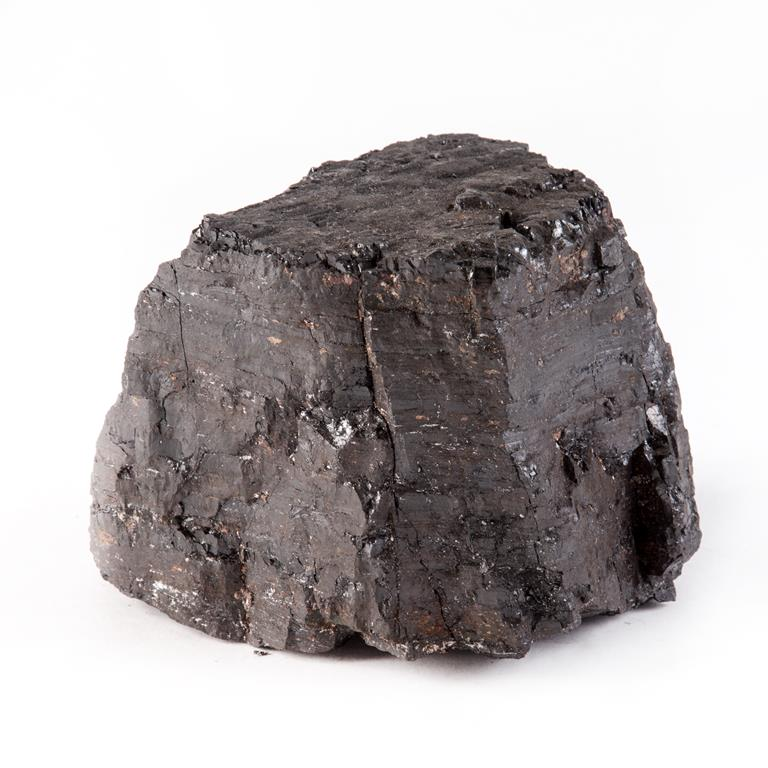 Coal mined from Westoe Colliery, South Shields