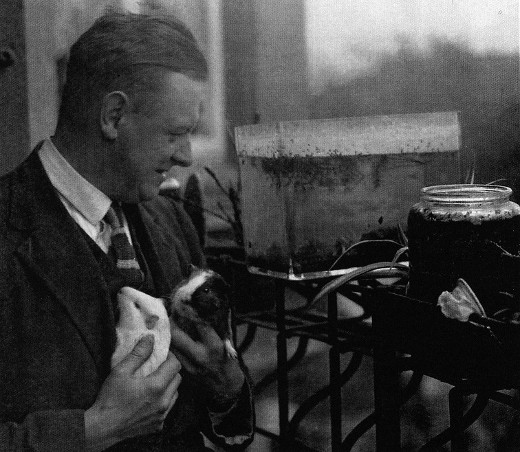 Old photo of white middle-aged man indoors holding two guinea pigs with water-filled glass jars and cases in background