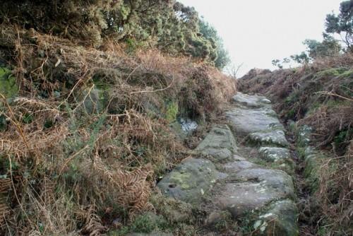 Rutway, Stoupe Brow Moor