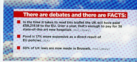 'Leave.Eu' leaflet endorsing the leave vote