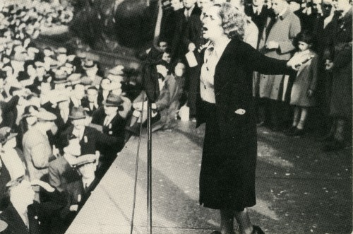 Wilkinson in action at a rally