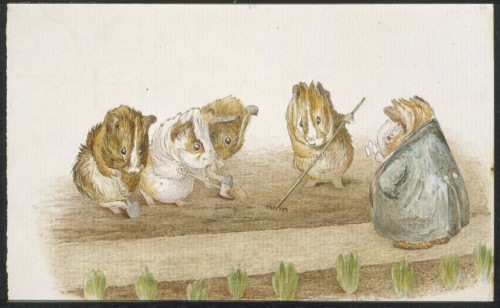 'Guinea Pigs Gardening' by Beatrix Potter, courtesy of F. Warne Co., V&A Museum